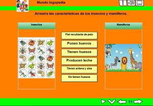 características de insectos y mamíferos